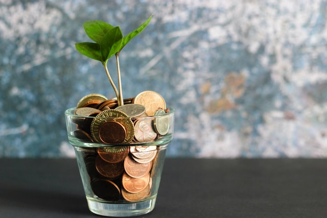 Plant growing from coins in a glass.